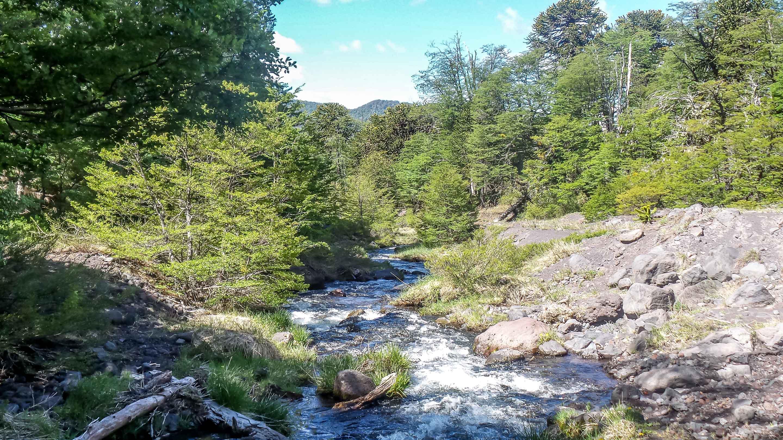 Parque-Nacional-Lanin-4